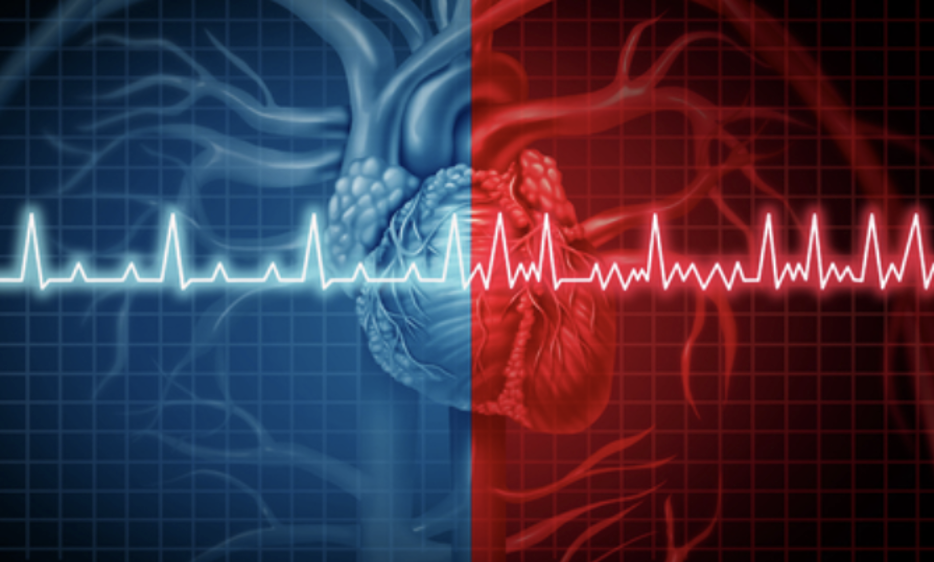Top Signs To Consider That You Have An Unhealthy Heart