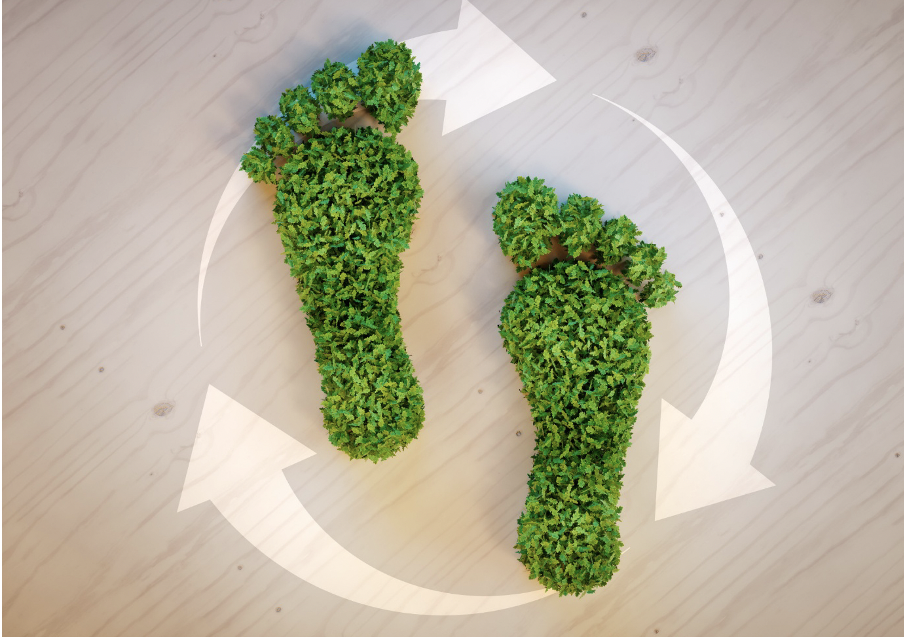 3 Reasons to Buy Vegan Shoes for Your Kids
