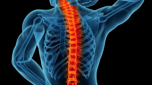 Spinal Fusion Surgery In Mumbai-