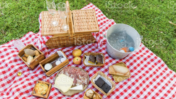 WHAT SHOULD YOU BRING ON A PICNIC