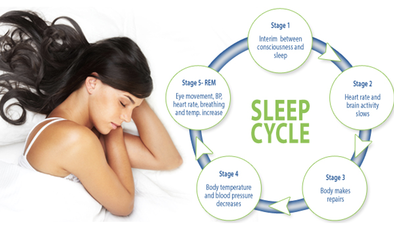 REM Sleep: The Paradoxical Stage of Sleep Cycle