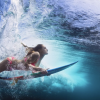 Best Types of Surfboards For Beginners